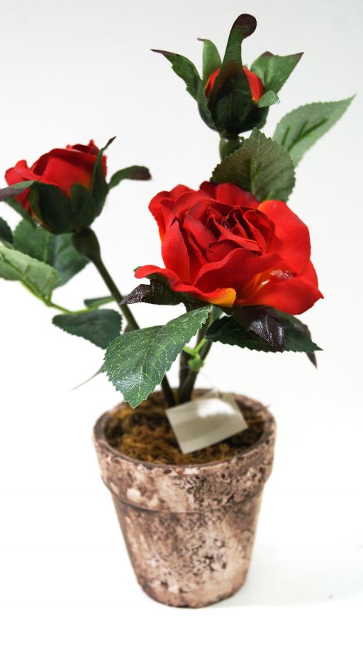 Онлайн магазин роза хутор официальный сайт - e9