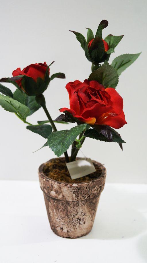 Онлайн магазин роза хутор официальный сайт - f